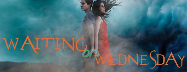 Waiting on Wednesday: Let the Storm Break by Shannon Messenger