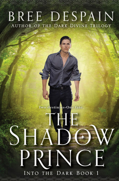 Exclusive Teasers from The Shadow Prince by Bree Despain