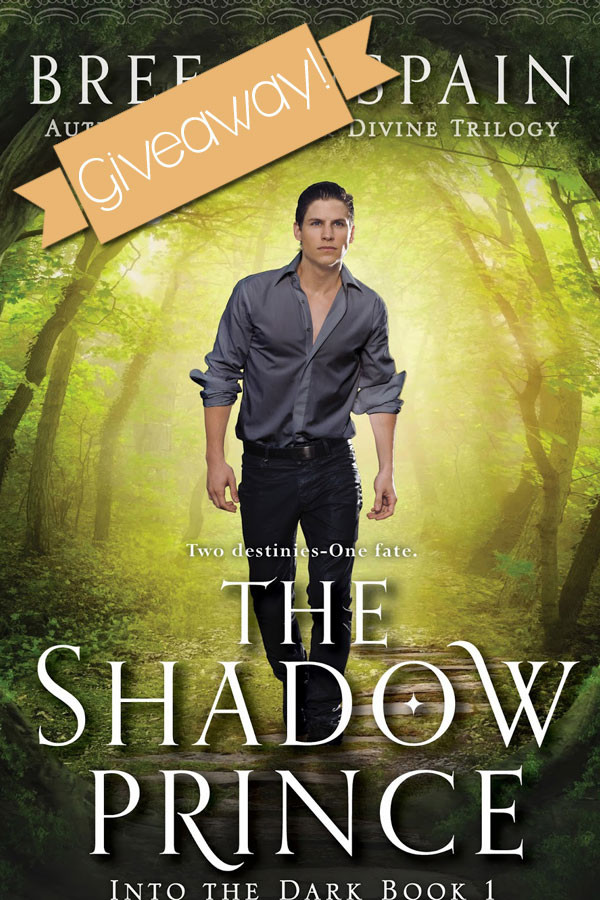 Giveaway! Signed Paperback of The Shadow Prince + Swag